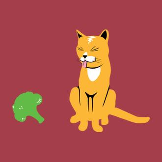 b2d332373a1 Kočičky brokolici tuze rády nemají