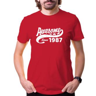 K narozeninám Narozeninové tričko Awesome since my birth