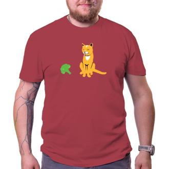 Kočičky brokolici tuze rády nemají